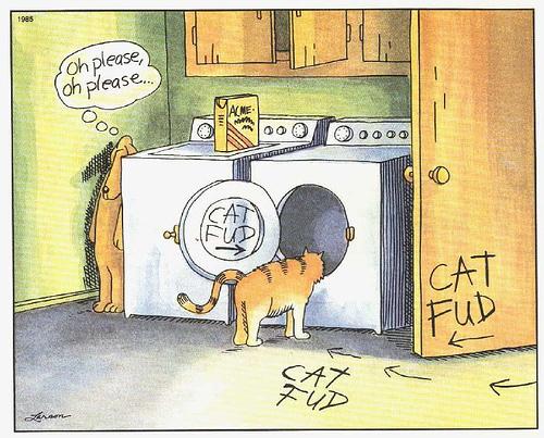 Free cat fud
