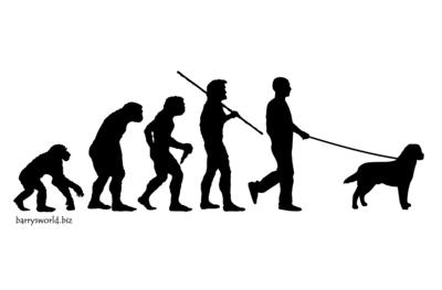 lab-evolution
