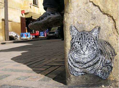 catcat21