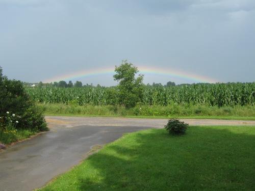 rainbow 020