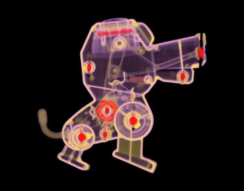 doggy-med