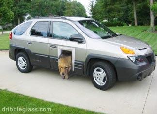 Finally\u2026a selling point for the Aztek! & Doggy door\u2026 | Hemmingford Dog Blog Pezcame.Com